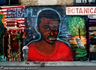 American Dream: a black boy, the skeleton of the Statue of Liberty, KKK and flames on the US flag (Bronx) New York Murales