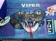 A terrifying viper   Viper   New York Murales