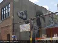 Squirrel in Williamsburgh, looks like a Bansky work (Brooklyn) New York Murales