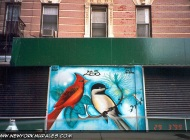 Murales in Lower East Side | Birds | New York Murales