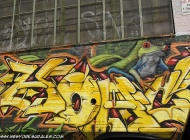 Writtens and frogs on this wall | Long Island | 5 Pointz | New York Murales